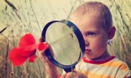"""读""""一线中小学教师教育子女时要注意的盲区""""有感"""